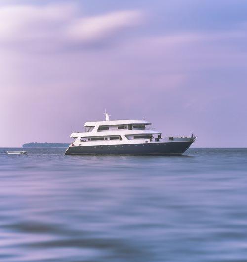 International Yacht Transfer